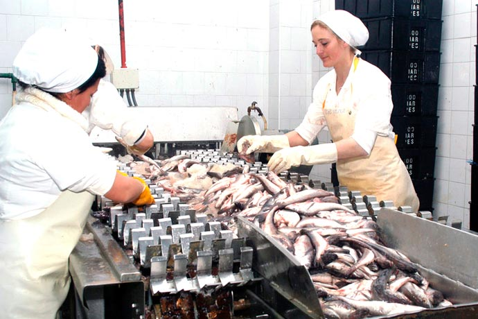 Revista Puerto - Conserva de pescado 01