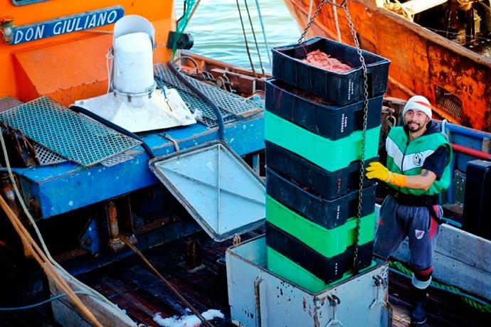 Revista Puerto - Flota amarilla del Golfo 01