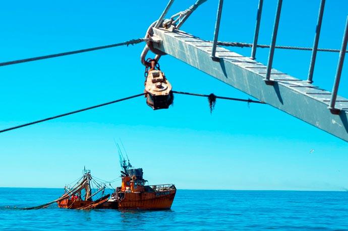 Revista Puerto - Marea de langostino en Rawson 09