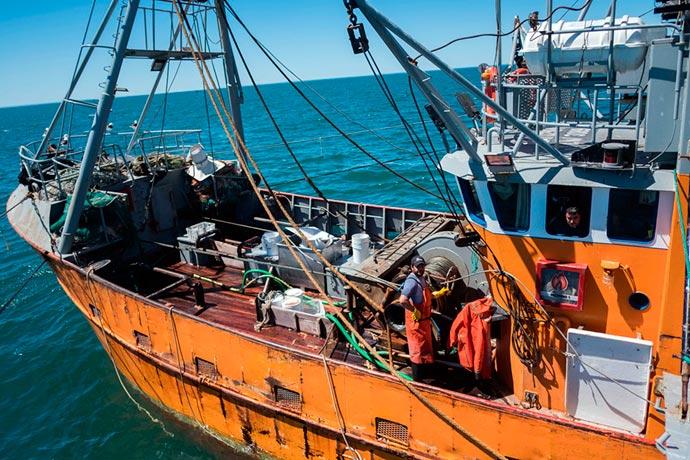 Revista Puerto - Marea de langostino en Rawson 18