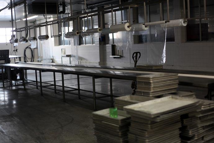 Revista Puerto - Planta procesadora de pescado