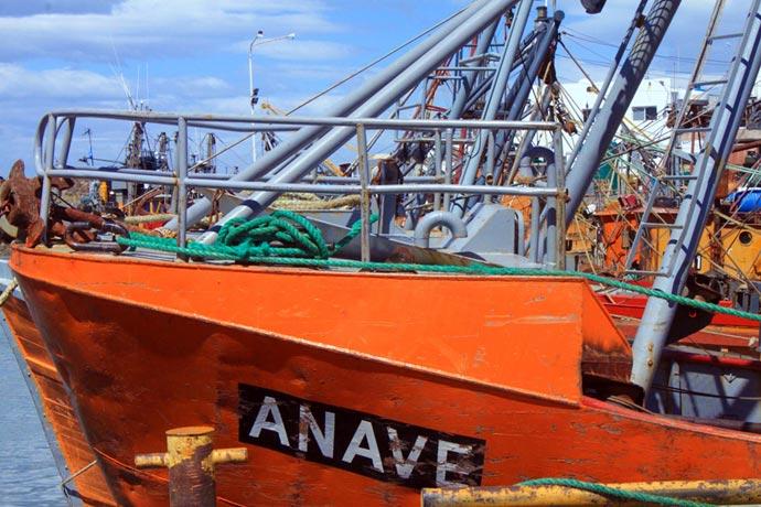 Revista Puerto - BP Anave