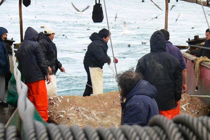Revista Puerto - Alto bycatch de merluza