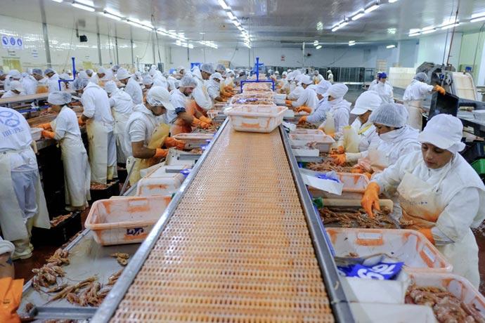 Revista Puerto - Obreros del pescado en Rawson