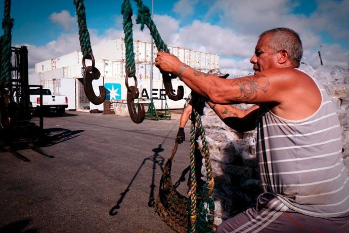 Revista Puerto - Calamar 03