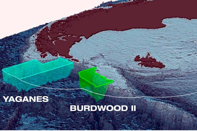 Diputados aprobó la designación de Áreas Marinas Protegidas a Yaganes y Burdwood II