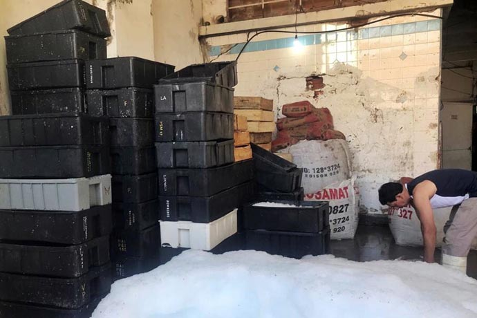 Revista Puerto - Clausuran planta pesquera clandestina en Mar del Plata 03