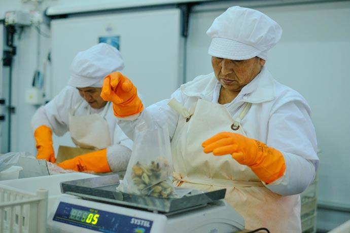 Buscan profundizar la calificación de mano de obra en plantas