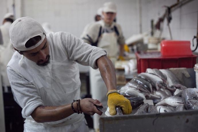 El anuncio de Macri representa un ahorro de 3150 pesos por obrero del pescado