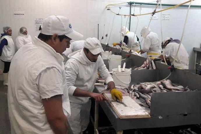 Revista Puerto - UTN y STIA capacitan trabajadores del pescado 05
