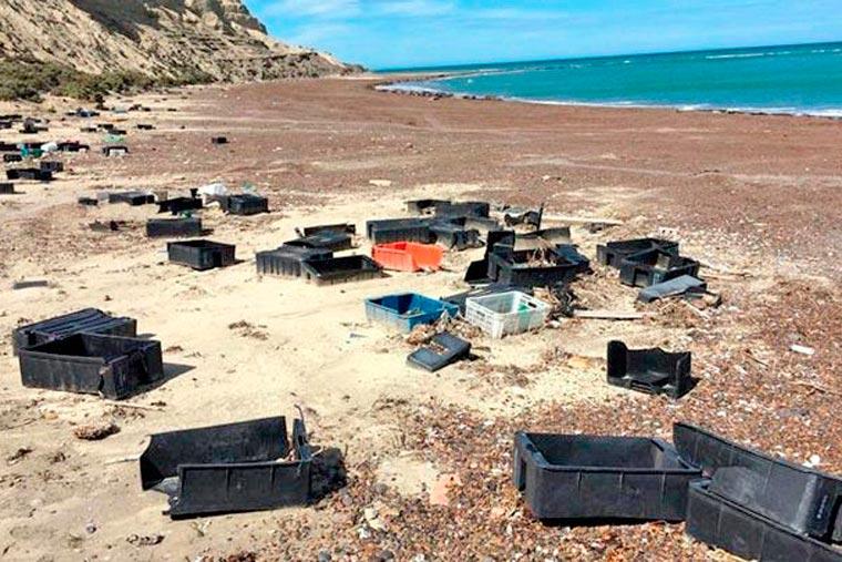 Revista Puerto - Desechos de la actividad pesquera . 02