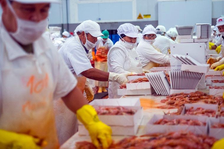Chubut aprobó polémica ley de empleo