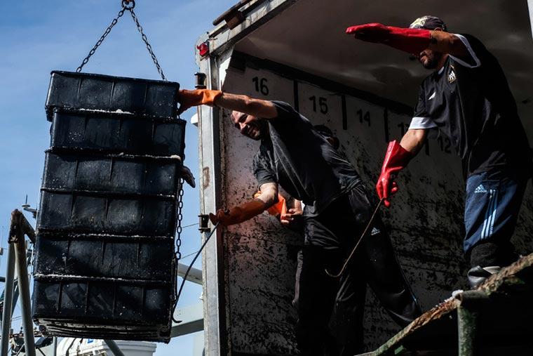 Informe económico oficial de la pesca