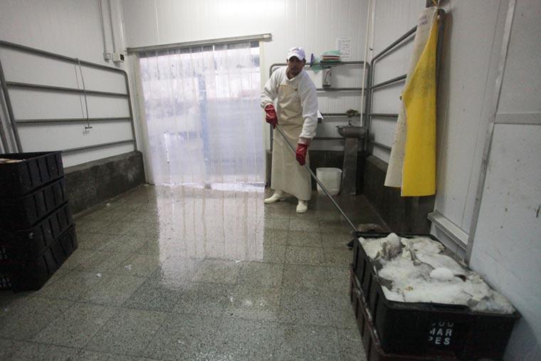 Los frigoríficos exportadores piden políticas productivas