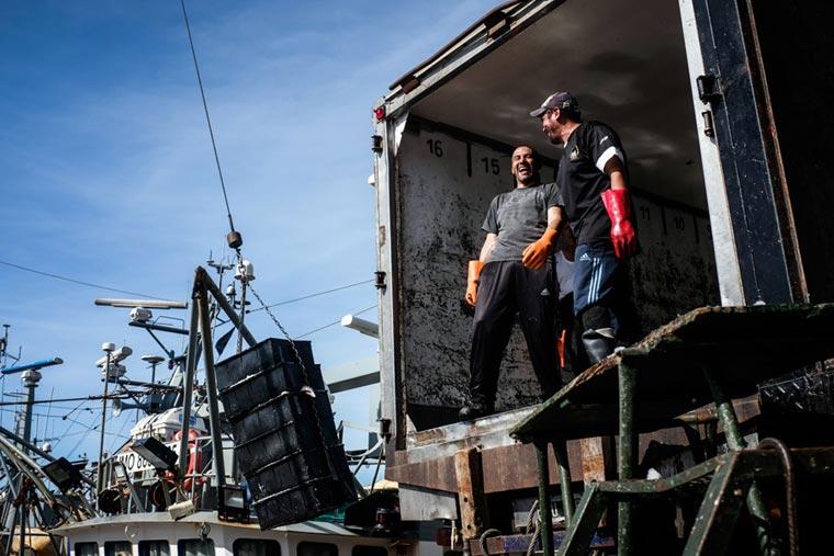 Actualización del 20 por ciento en la estiba de Mar del Plata