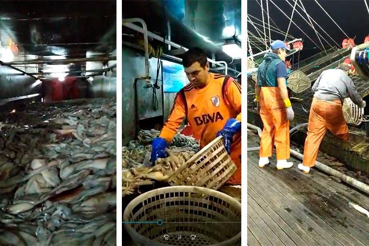 """Justicia Federal investiga descarte en potero """"Lu Qing Yuan Yu 280"""" de Patagonia Fishing con base en Mar del Plata"""