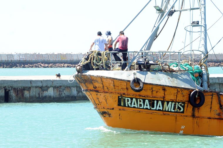 Chubut busca consolidar la pesquería de anchoíta