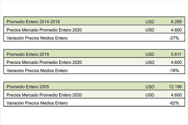 Revista Puerto - Langostino 01 - Evolucion precio promedio de exportacion de langostino