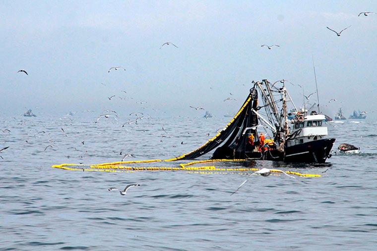Revista Puerto - Pesca mundial - 02
