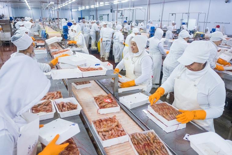 Revista Puerto - Los buques de ALFA generan miles de puestos de trabajo en tierra - 02