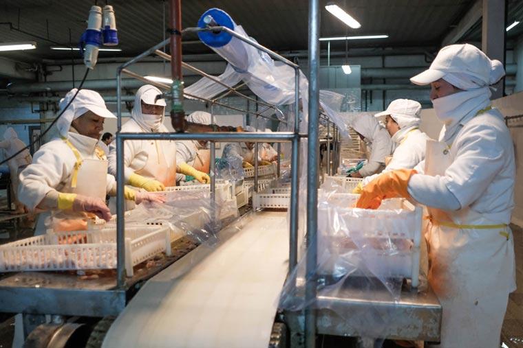 Revista Puerto - Mar del Plata - Crecen los casos de Covid-19 en la industria pesquera - 02