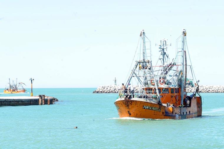 El 1 de noviembre arrancaría la zafra de langostino en Chubut