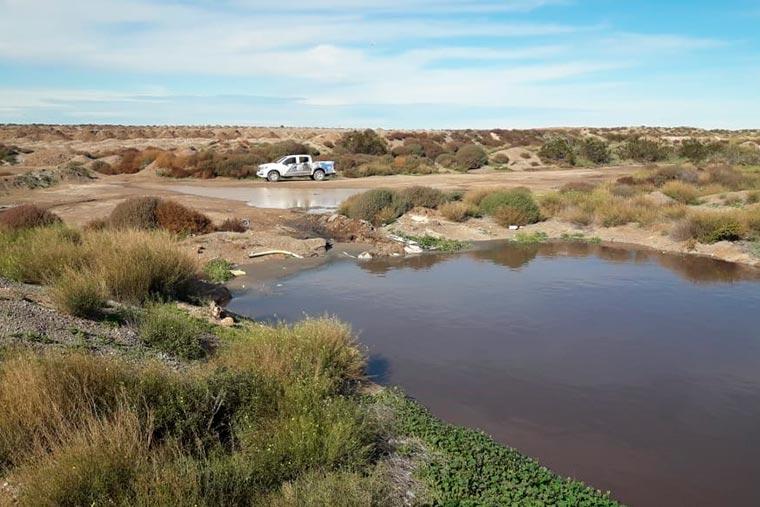 Detectan efluentes pesqueros en cuencos municipales de Madryn