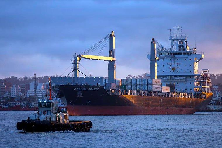 Revista Puerto - Exportaciones de pescado congelado - 02