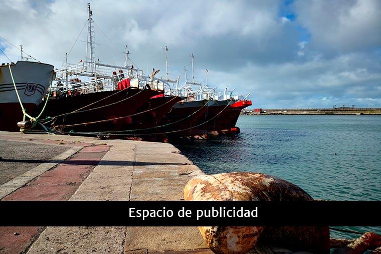 Revista Puerto - famiq