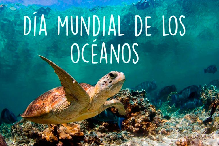 Revista Puerto - Charlas por el Dia de los Oceanos - 02