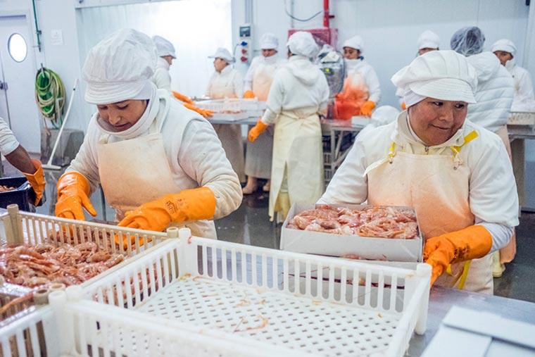 El STIA y CAPIP acordaron suba salarial del 45 por ciento