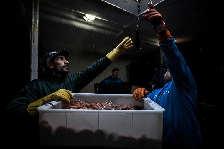 Ahora proponen que el Fondo Pesquero se use para la pandemia