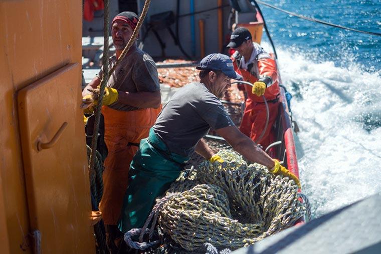 La flota amarilla y el SOMU pautaron suba salarial del 27,5%