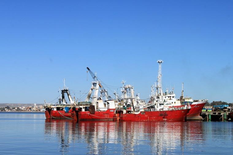 Murió marinero de un pesquero amarrado en el muelle Storni