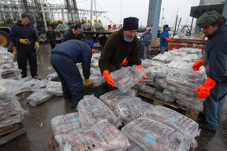 Exportaciones de productos congelados del primer semestre