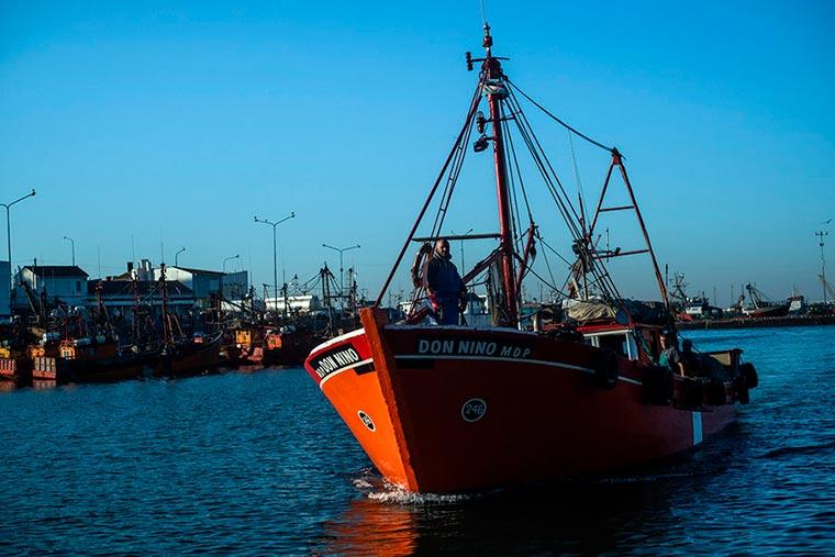 Revista Puerto - Mar del Plata - Pescadilla - 07
