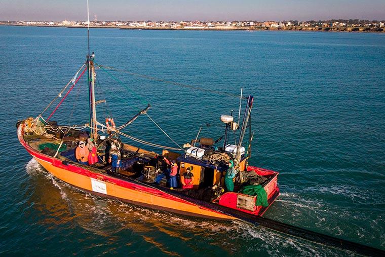 Revista Puerto - Mar del Plata - Pescadilla - 08