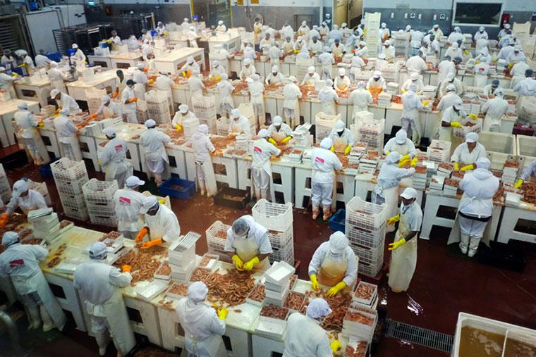 Investigan condiciones laborales y capacidad instalada en la pesca de Chubut