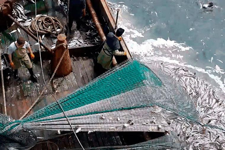 Revista Puerto - Marineros de buques pesqueros