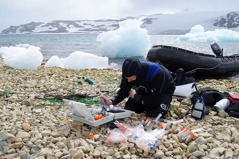 Comenzó la 40° reunión de la Comisión para la Conservación de Recursos Vivos Marinos Antárticos
